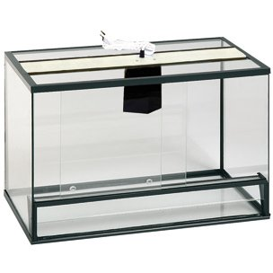 CHORDA Glasterrarium 50x30x35cm -