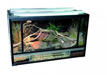 Lucky Reptile Glasterrarium mit Kunststoffrahmen 60x40x40cm -