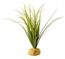 Exo Terra Turtle Grass -