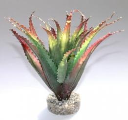 Sydeco 349679 Terrariumpflanze Aloes -