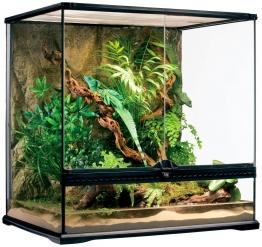 EXO TERRA Terrarium , BxTxH: 65x51x66 cm