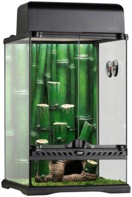 EXO TERRA Set: Terrarium »Bamboo Forest Kit«, BxTxH: 33x33x48 cm