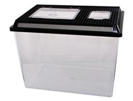 Dragon Neu PET-PLAZA Kunststoffbox - Faunarium - Kunststoffterrarium - Faunabox - Insektenbox - Insektenterrarium - Box für Futterinsekten (46 x 30,5 x 33,5cm) - 1