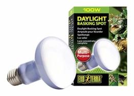 Exo Terra Daylight Basking Spot Mehrzweck-Spotlampe 100W - 1