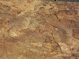 Korkrückwand innen Desert 90x60 cm, Terrarium, Kork Rückwand (92016) - 1
