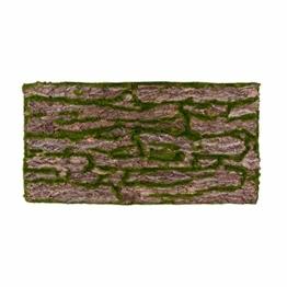 REPITERRA Terrarium Rückwand 3D Hintergrund Deko Naturlook Rinde 120x60cm - 1