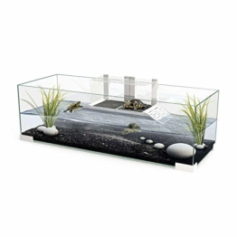 Tartarium 80 Schildkröten Terrapin Reptilien-Glastank  mit 2 x Rampe - 1